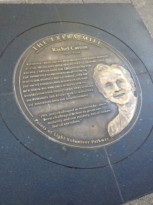 {photo: a plaque on the ground memorializing Rachel Carson}